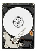 Жесткий диск Western Digital WD AV-25 500 GB (WD5000LUCT)