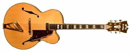 D'Angelico Полуакустическая гитара D Angelico EXL-1
