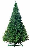 Green Trees Ель Рублевская 4.5 (пленка)