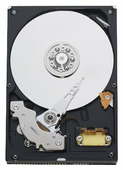 Жесткий диск Western Digital WD Blue 160 GB (WD1600AAJB)