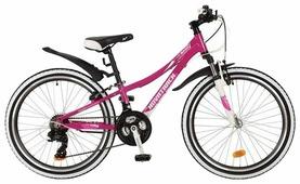Подростковый горный (MTB) велосипед Novatrack Katrina 24 21 (2017)