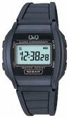 Наручные часы Q&Q ML01-105