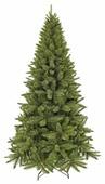 Triumph Tree Ель Лесная Красавица стройная