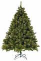 Triumph Tree Сосна Валдайская