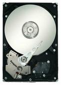 Жесткий диск Seagate ST31000640NS