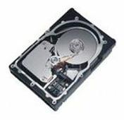 Жесткий диск Lenovo 90P1381