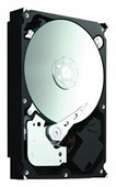 Жесткий диск Seagate ST32000542AS