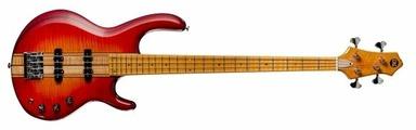 Бас-гитара ERG Lord IV