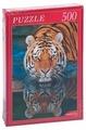 Пазл Рыжий кот Амурский тигр (ГИ500-8277), 500 дет.