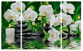 """Schipper Картина по номерам """"Wellness-Oase"""" 50х80 см (9260681)"""